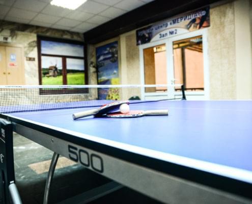 Настольный теннис - 1